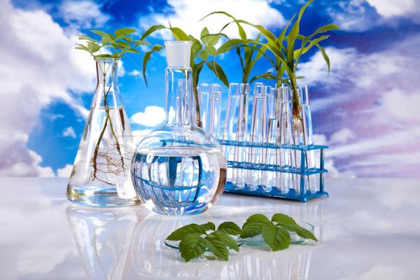 лаборатория bio органический современных стекла медицина Сток-фото © JanPietruszka