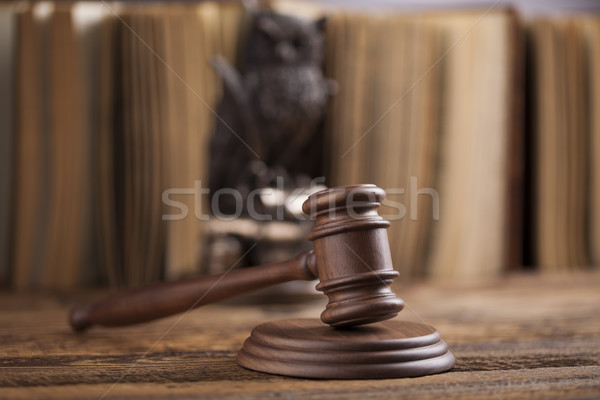 прав совы судья молоток правосудия молота Сток-фото © JanPietruszka