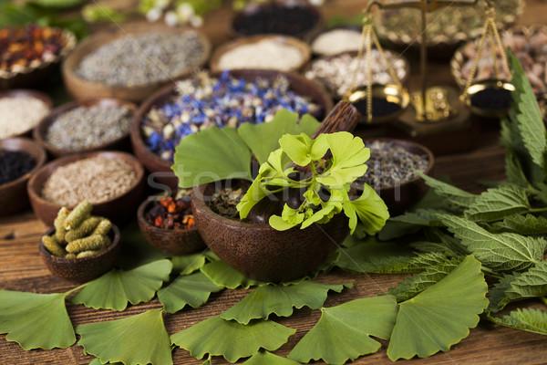 ツリー 自然 木製のテーブル 自然 美 ストックフォト © JanPietruszka