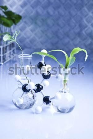 Photo stock: Laboratoire · bio · organique · modernes · verre · médecine