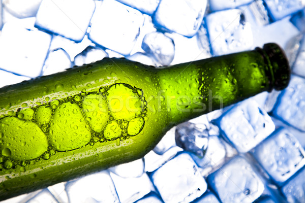 Yeşil şişe bira toplama cam stüdyo Stok fotoğraf © JanPietruszka