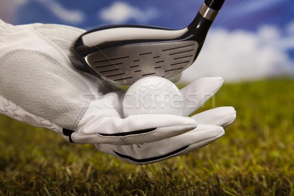 Hand and golf ball Stock photo © JanPietruszka
