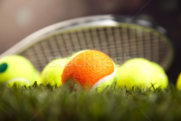 Stock photo: Sports balls with equipment, natural colorful tone