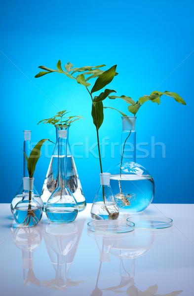 Químicos laboratorio cristalería bio orgánico moderna Foto stock © JanPietruszka