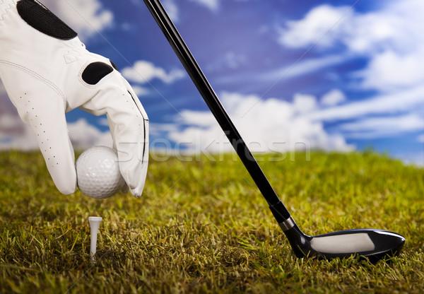 Golf tee  Stock photo © JanPietruszka