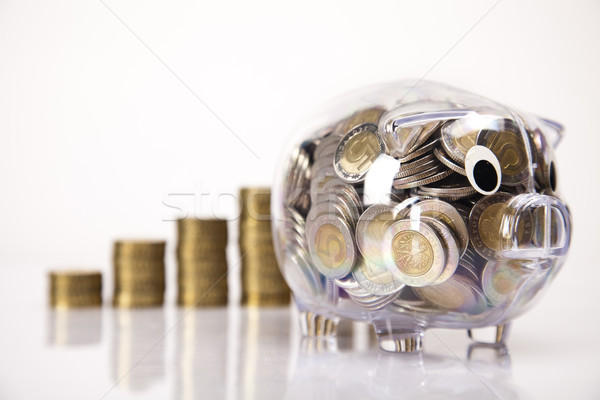 Business concept, Pig bank and money coin Stock photo © JanPietruszka