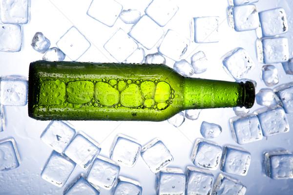 Verde bottiglia birra raccolta vetro studio Foto d'archivio © JanPietruszka