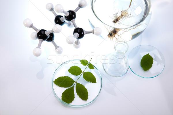 Laboratuvar biyo organik modern cam tıp Stok fotoğraf © JanPietruszka