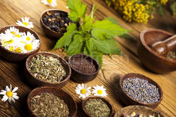 Assorted natural medical herbs and mortar Stock photo © JanPietruszka