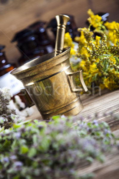 新鮮な 木製 デスク 自然 美 ストックフォト © JanPietruszka