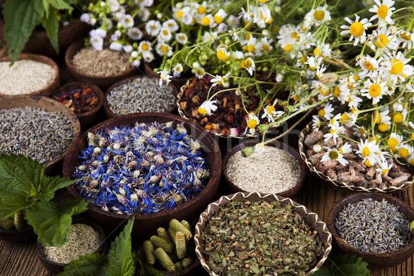 Doğal tıp ahşap masa doğa güzellik Stok fotoğraf © JanPietruszka