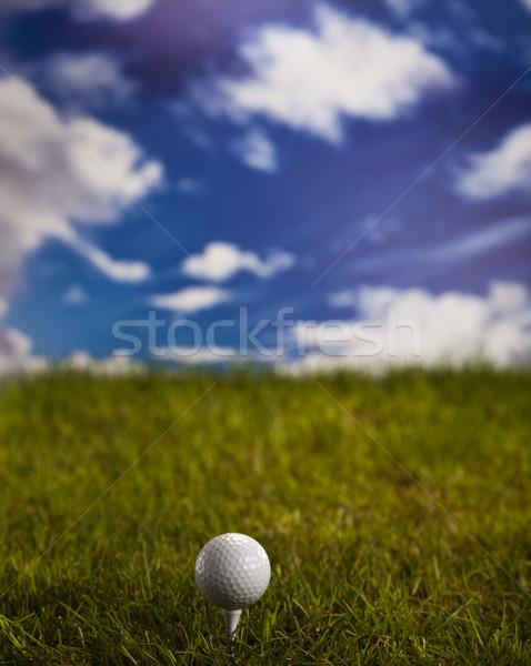Golf ball on green grass over a blue sky  Stock photo © JanPietruszka
