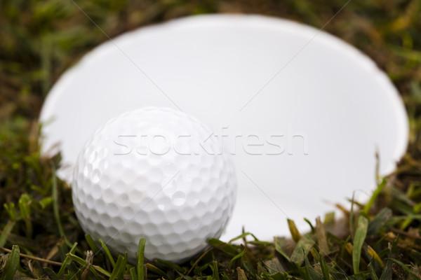 Golf club Stock photo © JanPietruszka