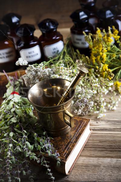 природного красочный природы красоту медицина Сток-фото © JanPietruszka