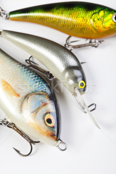 Voar pescaria naturalismo comida natureza rio Foto stock © JanPietruszka