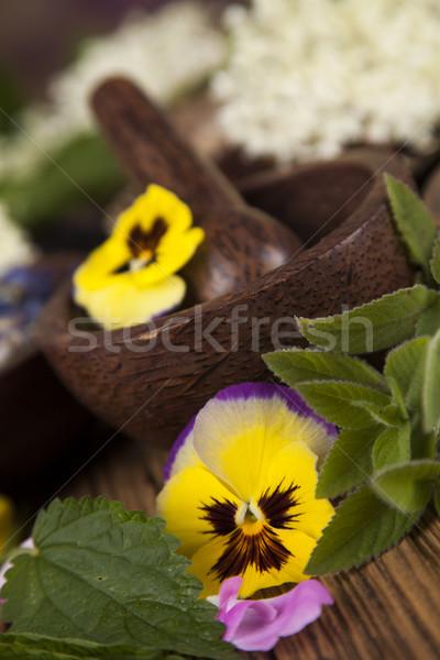 Természetes gyógymódok fa asztal gyógynövény természet szépség gyógyszer Stock fotó © JanPietruszka