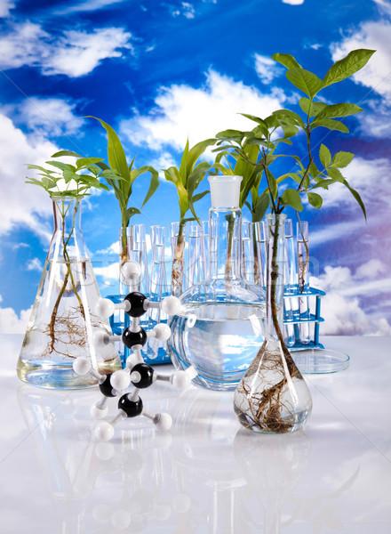 Stok fotoğraf: Laboratuvar · biyo · organik · modern · tıbbi · hayat