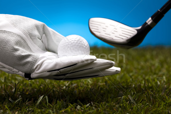 Golf club Stock photo © JanPietruszka