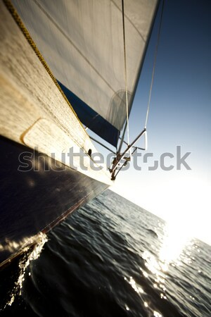 Sailing to the sunrise, summertime saturated colorful theme Stock photo © JanPietruszka
