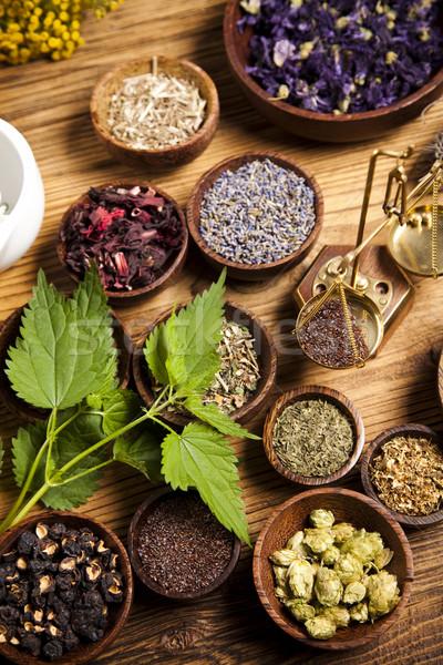 Alternatieve geneeskunde gedroogd kruiden natuur schoonheid geneeskunde Stockfoto © JanPietruszka