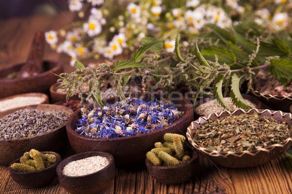 Médecine alternative séché herbes naturelles médicaux nature Photo stock © JanPietruszka