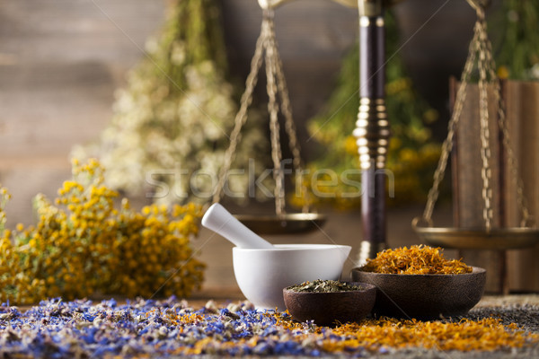 Mortar, Alternative medicine and Natural remedy Stock photo © JanPietruszka