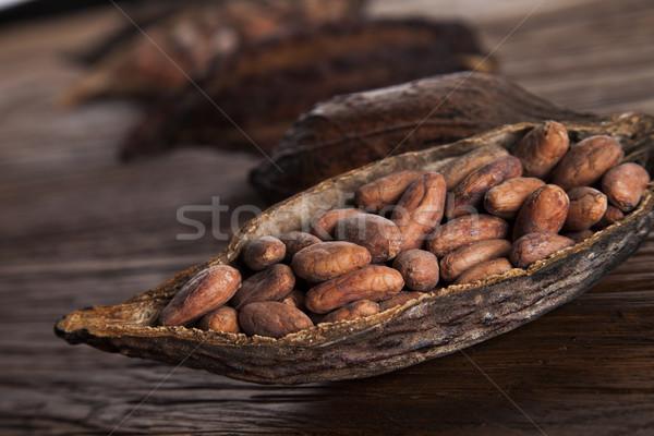 Vaina mesa de madera hoja verde grasa Foto stock © JanPietruszka