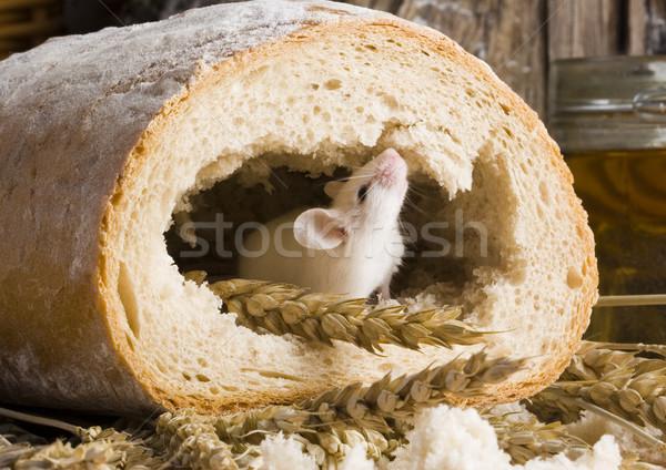 Traditional bread, vivid colors, natural tone Stock photo © JanPietruszka