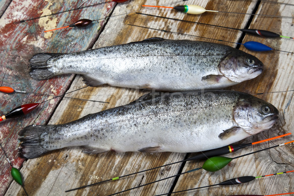 Pêche naturelles alimentaire nature rivière volée Photo stock © JanPietruszka
