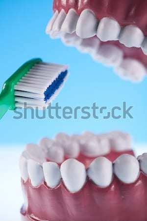 зубов кровь здоровья рот человека зубов Сток-фото © JanPietruszka