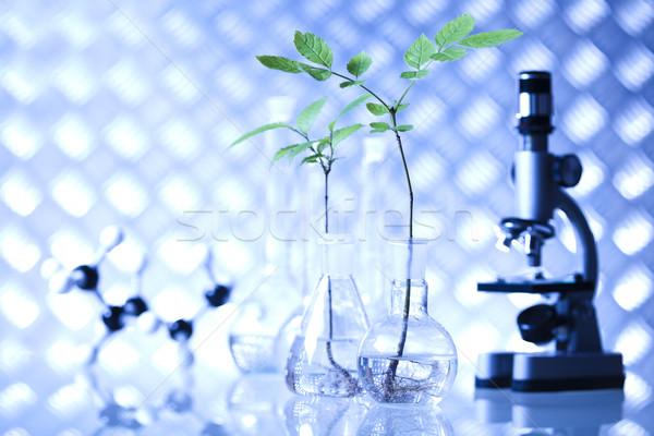 лаборатория bio органический современных медицинской стекла Сток-фото © JanPietruszka