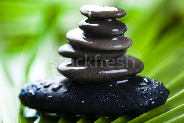 Naturaleza muerta piedra zen ambiente grupo Foto stock © JanPietruszka