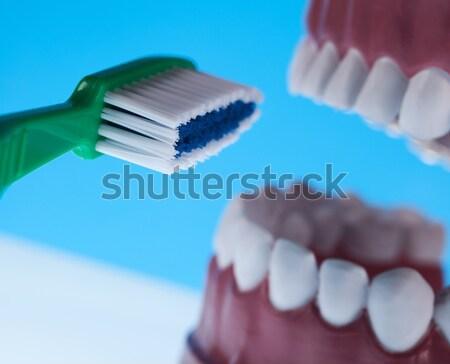 Teeth, Dental health care objects Stock photo © JanPietruszka