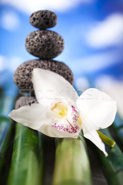 Orchidée fleur zen pierres groupe Rock Photo stock © JanPietruszka