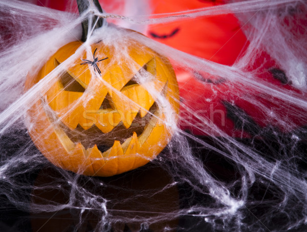 Halloween background with web and spider,pumpkin  Stock photo © JanPietruszka