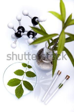 Laboratorio bio orgánico moderna vidrio medicina Foto stock © JanPietruszka