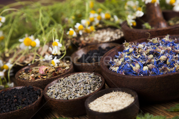 Natural remedy, mortar and herbs Stock photo © JanPietruszka