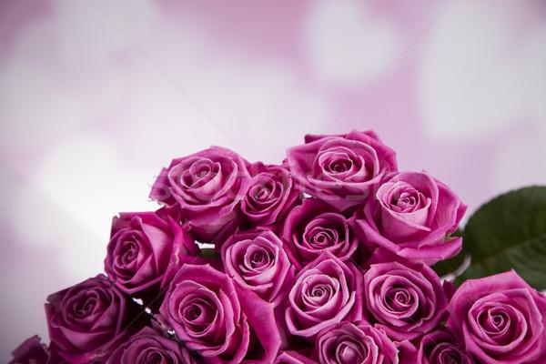 Naturalnych świeże róż walentynki tekstury miłości Zdjęcia stock © JanPietruszka