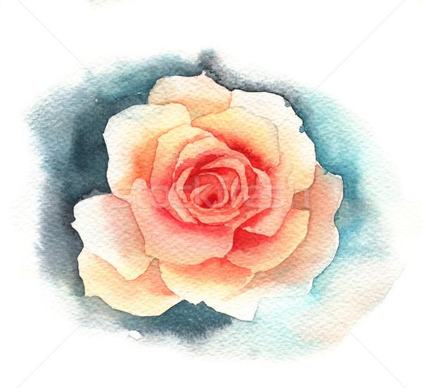 Acquerello rosa design arte colore testa Foto d'archivio © jara3000
