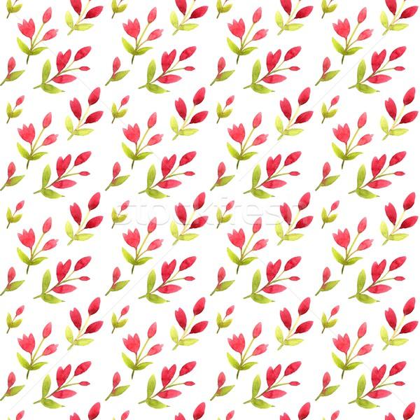 Rosa fiori acquerello foglia bellezza Foto d'archivio © jara3000