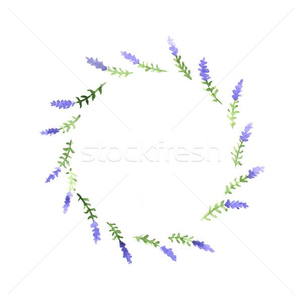 Aquarela floral decorativo elemento branco projeto Foto stock © jara3000