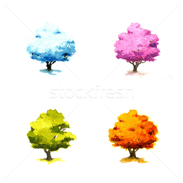 Trees in different seasons Stock photo © jara3000