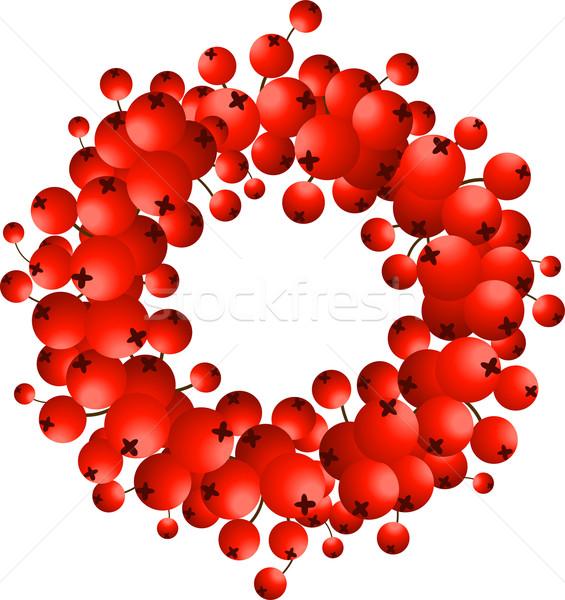 Corona rojo bayas blanco eps 10 Foto stock © jara3000