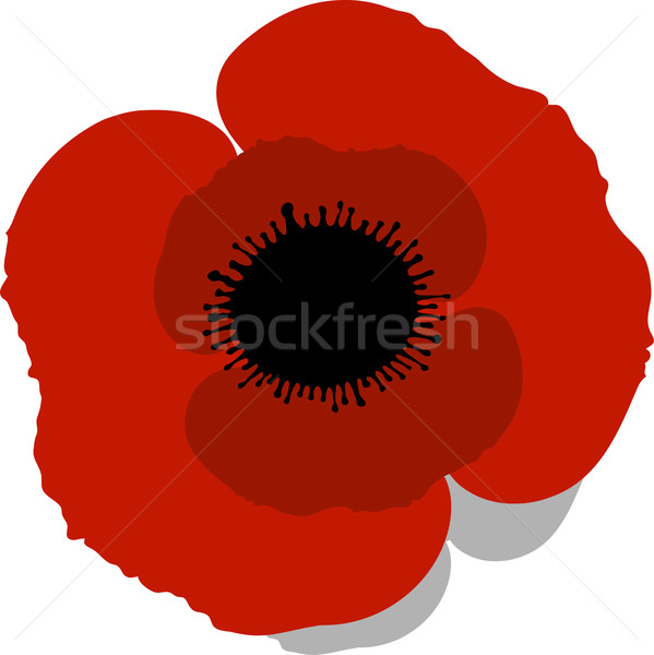 Red Poppy Stock photo © jara3000