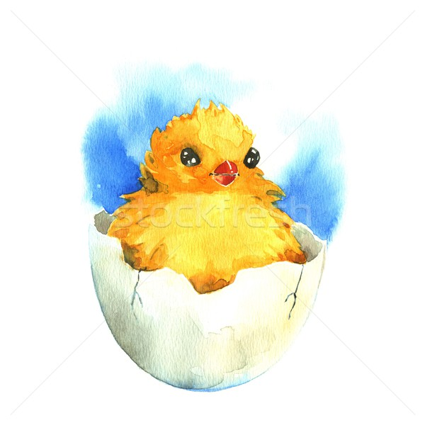 Chicken in the eggshell. Watercolor Stock photo © jara3000