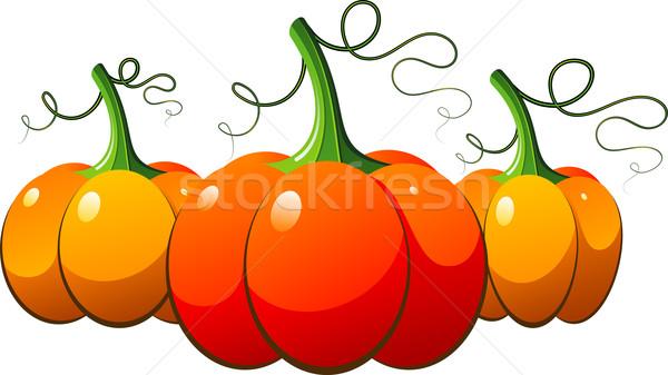 Three orange pumpkins over white Stock photo © jara3000