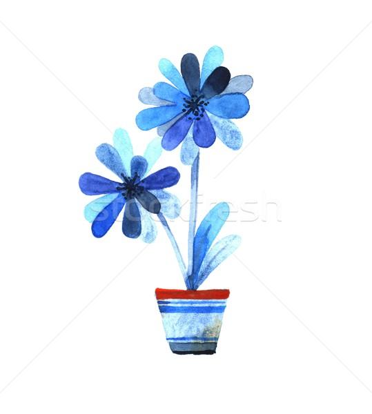 Blu fiori pot acquerello illustrazione fiore Foto d'archivio © jara3000