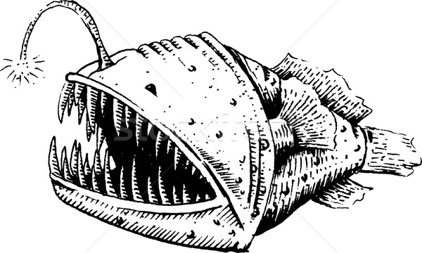 Fish-dog, fish, angler or sea devil Stock photo © jara3000
