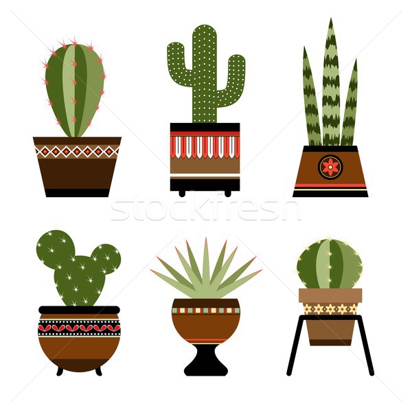 Six cactuses in pots with ornament Stock photo © jara3000