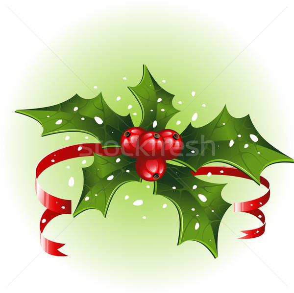 Natale bianco eps foglia frutta neve Foto d'archivio © jara3000